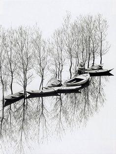 Toni Schneiders, Flooding at Lake Skutarisee, Yugoslavia, March 1971 - http://www.buchsteinerartmanagement.de/schneiders_en.html