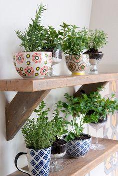 The Best Indoor Herb Garden Ideas for Your Home and Apartment (No 18) – DECOOR #indoorherbgardenshelf