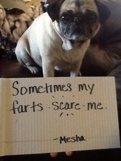Sometimes my farts scare me!