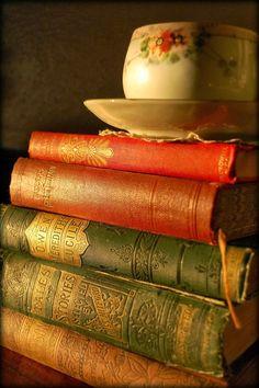 books.quenalbertini: Beautiful old books