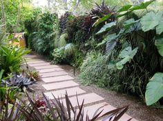 Garten Ideen mit auffallenden, tropischen Pflanzen an der Mauer