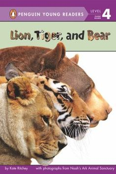 In Locust Grove, Georgia, an American black bear named Baloo, a lion named Leo, and a Bengal tiger named Shere Kahn all live happily together. This true story of unlikely friendship is filled with photographs supplied directly from Noah's Ark Animal Sanctuary.