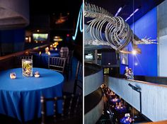 New England Aquarium Wedding Boston MA By MegRuth Via Flickr