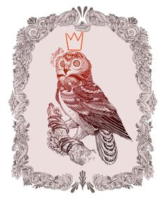Iain Macarthur | Escape Into Life - cool owl with a crown