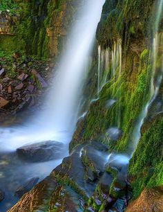 Mossy waterfall, Timpanogos Wilderness, Ut