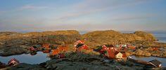 Väderöarnas Värdshus & Konferens på Västkusten i Bohuslän | Boende