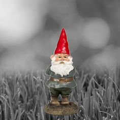 Someone is very serious about gnomes. More for sale at welovegnomes.com