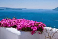Smells like early summer! Images Of Summer, Santorini Greece, North Africa, Natural Living, Beautiful Places, Amazing Places, The Good Place, Around The Worlds, River