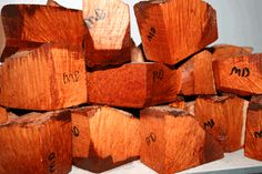 Tuscan Briar blocks for pipe-making.