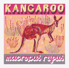 K is for Kangaroo who takes hop, skip and bound. #Illustration by Alice Pattullo.