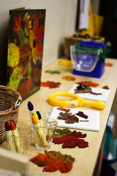 During Our Forest Inquiry fall provocation-- reggio inspired ideasfall provocation-- reggio inspired ideas Fall Preschool Activities, Kindergarten Science, Classroom Activities, Nature Activities, Kindergarten Classroom, Preschool Crafts, Reggio Emilia, Reggio Inspired Classrooms, Reggio Classroom