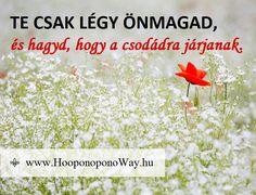 Hálát adok a mai napért. Te csak légy önmagad, és hagyd, hogy a csodádra járjanak. Egyetlen mércéd legyen a Szeretet. Senki és semmi másnak nem kell megfelelned. Így szeretlek, Élet! Köszönöm. Szeretlek ❤️ ⚜ Ho'oponoponoWay Magyarország ⚜ www.HooponoponoWay.hu