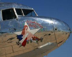 Bluebonnet Belle    2008 Altus Airshow - Altus Air Force Base, Oklahoma