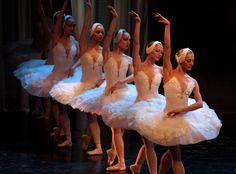 balet snd bratislava - Hľadať Googlom Girls Dresses, Flower Girl Dresses, National Theatre, Bratislava, Ballet Skirt, Wedding Dresses, Fashion, Dresses Of Girls, Bride Dresses