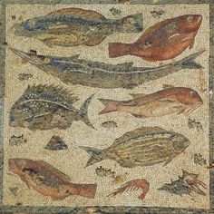 Fish. Part of  Villa Dar Buc Ammera, Libya, Roman era mosaic of the four seasons
