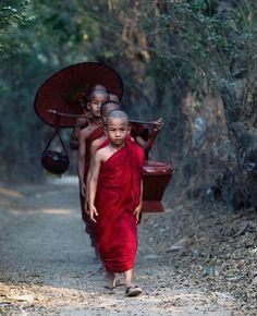 Monjes budistas .Young