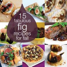 15 Fabulous Fall Fig Recipes- once we get that fig tree up and running in 2 or 3 years we'll need this!