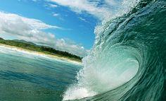 Por trás das fotos aquáticas
