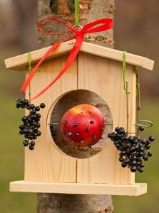 wooden birdhouse and fruit bar for birds