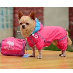 Professional Dog Hoodies Clothing Designed with Bags Outdoor Waterproof Breathable Mesh Lined Raincoat Pet Clothes