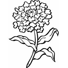 Carnation coloring page Fun Coloring Pages for Kids and Adults