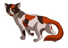 Redtail by tigon.deviantart.com on @deviantART would have loved to know what this character better..it's such a shame he had to be gone before the story could even start T^T
