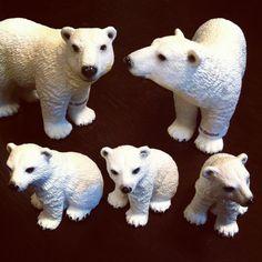 polar bears Polar Bears, Animals, Animales, Animaux, Animal, Animais, Polar Bear