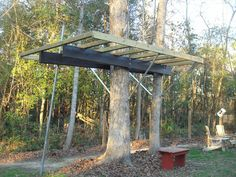 1000 images about diy tree house on pinterest treehouse for How to build a treehouse step by step