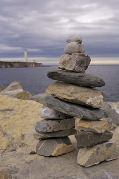 I have always built one of these at every place I have lived. I'm looking for the right rocks to build one in my new yard this year.