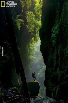 Claustral Canyon hidden in Australia's Blue Mountains
