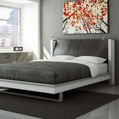 CT Light Bed - Boulevard Urban Living
