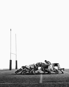 Rugby by Daniel D'Ottavio / Silas Finch Rugby Sport, Rugby Club, Rugby Men, Rugby Girls, Rugby League, Rugby Players, Rugby Quotes, Rugby Poster, Rugby Coaching