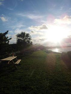 Picnic Area at Long Key SP