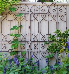 Ornamental trellis on fence.... awwwwesome idea and will definitely be doing this during the summer and all following summers!!!!!!!!