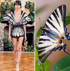 Butterfly Fashion, Butterfly Dress, Fast Fashion, New York Fashion, Style Fashion, Fashion Illustration Template, Fashion Illustrations, Looking Gorgeous, Editorial Fashion