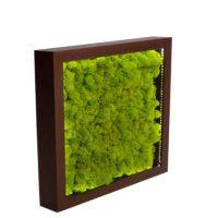 green moss & LED panel