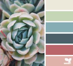 Blue, Rose, Green, Beige, Pink Colour