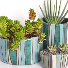 beautiful containers for happy plants | Esther Pottery - Point Reyes Series | at Potted in Los Angeles