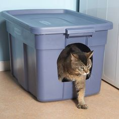 No-Mess Litter Box - It's not fancy, but it's a cheap way to keep litter in the litter box where it belongs. Trace an opening on one end of a plastic storage container, then push a sharp razor knife into the plastic and cut out the opening. Pour in the li