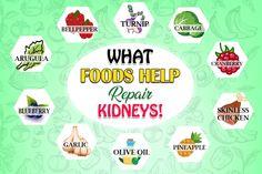 Healthy foods always help to repair damaged kidneys Foods Good For Kidneys, Healthy Kidneys, Healthy Foods, Causes Of Kidney Disease, Chronic Kidney Disease, Food For Kidney Health, Kidney Foods, Kidney Recipes, Diet Recipes