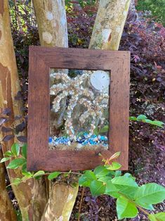 "12""x 10"" Beach Glass Wall and/or Window Art/Sea Shell Art/Resin Art/Unique Coastal Decor/Sun Catcher/Beach House Decor/Great Christmas Gift  Handmade in South Carolina with high quality materials (crushed shells, seashells, sand dollar, sand) and secured with care. Clear resin covers the glass to"