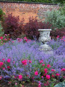 Magic Garden, Dream Garden, Garden Urns, Garden Plants, Roses Garden, Garden Shade, Flower Gardening, Beautiful Gardens, Beautiful Flowers