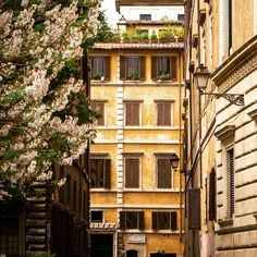 In the heart of Rome, exploring the enchanting beauty of Italy's capital. Photo by Michele Cirillo