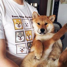 Warehouse Shiba Inu T-Shirt Grey/White - ikinari - Unisex Hoodies & T-Shirts Animals And Pets, Baby Animals, Cute Animals, Akita Dog, Wolf, Tiny Puppies, Cute Dogs Breeds, Shiba Inu, Funny Animal Pictures