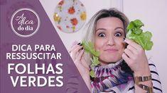 COMO MANTER A SALADA SEMPRE CROCANTE - truque para ressuscitar folhas verdes para mais dicas clique na #aDicadoDia   A DICA DO DIA COM FLÁVIA FERRARI