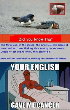 This post gave me cancer. << ...but the birds!!!!