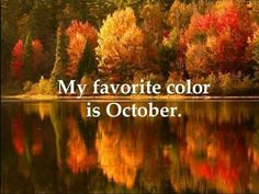 Ahhh yes. FALL the best season of them all. The smell the crisp in the air. Winter Gif, My Favorite Color, My Favorite Things, Autumn Scenery, Seasons Of The Year, Happy Fall Y'all, Happy October, Happy Thanksgiving, October 1