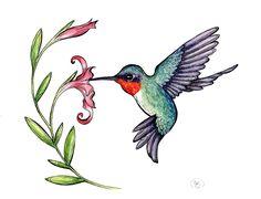 rubythroated-hummingbird-clipart-1.jpg (900×687)