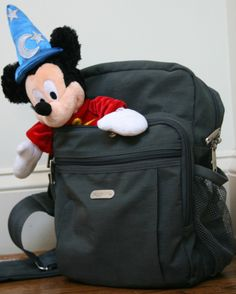 Top 20 things to bring with you to the Disney Theme Parks