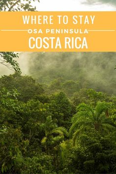 Visiting the Osa Peninsula in Costa RIca? Here are our tips for where to stay: towns, villages and hotel recommendations to enjoy one of the most biologically diverse places on earth.  mytanfeet.com/...